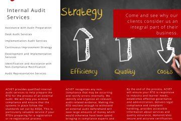 internal-audit-support